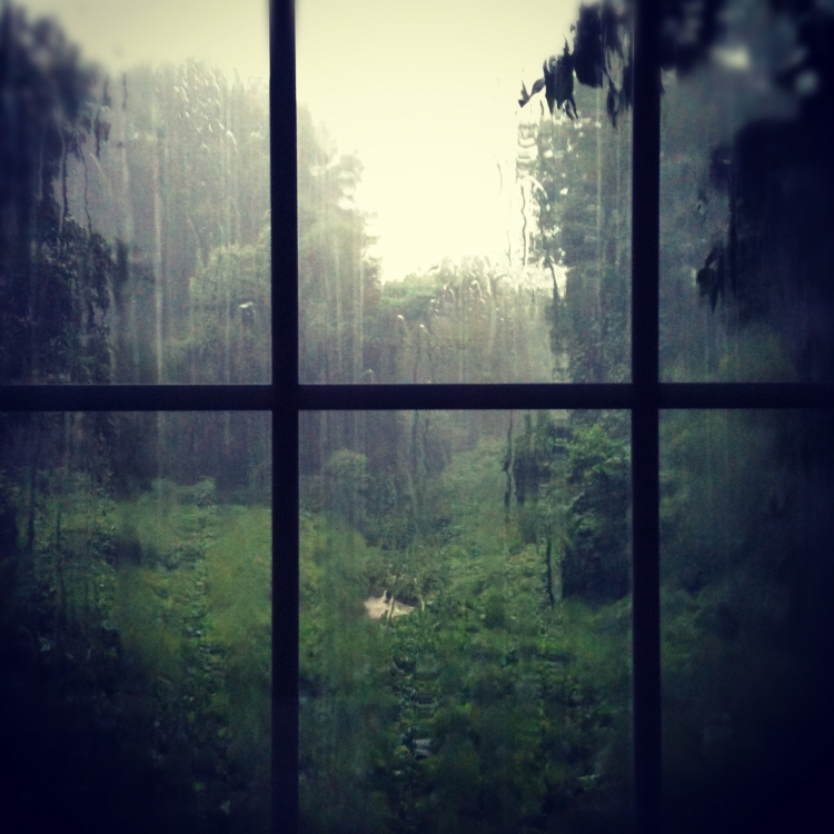rainy day out window